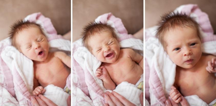 Limefish studio photography violet newborn photos northern virginia