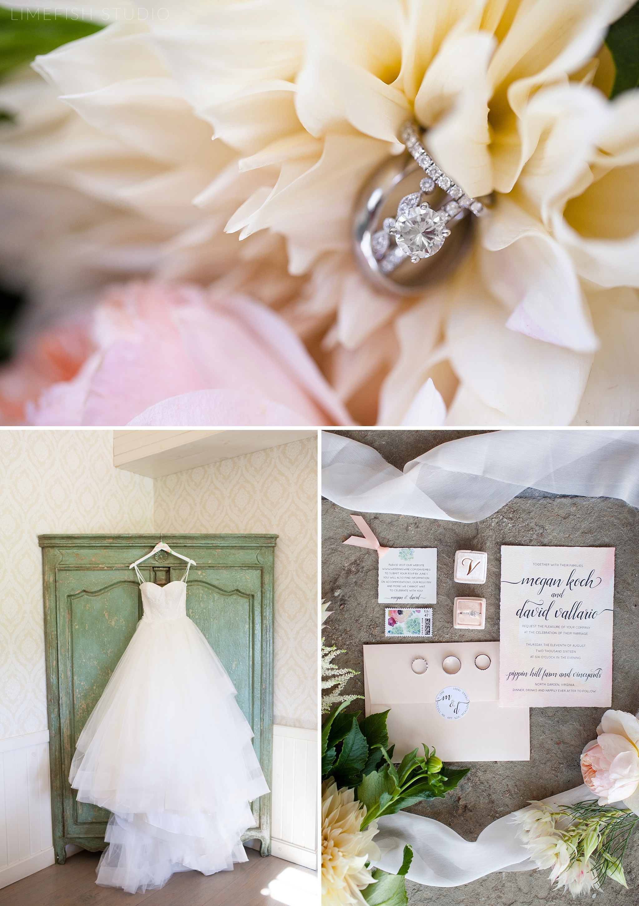 2016 Megan & David Pippin Hill Farm & Vineyards Wedding by Limefish Studio Photography   Charlottesville Virginia Wedding